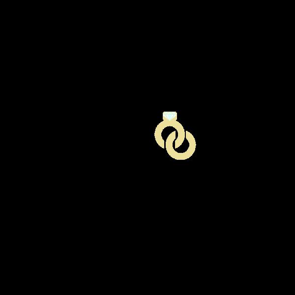Vellora_Logo-Recreation_Triacore_1080x1080-colored